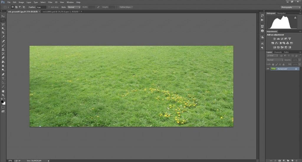Texture prospettica di erba by VISHopper