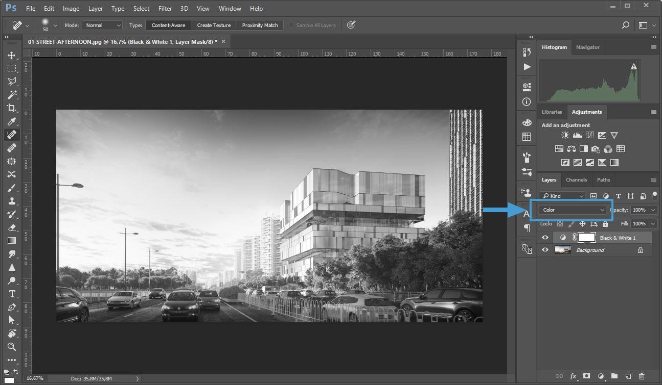 Convertire in bianco e nero un lavoro in corso ti consentirà di osservare meglio i valori di contrasto dell'immagine.
